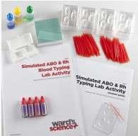 Tipizzazione del sangue ABO RH